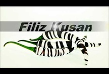 Made by Filiz Kusan! / These designs are made by Filiz Kusan!   / by Filiz Kusan
