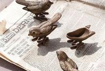 b-b-b-bird-bird-bird, bird is the word / Birdies!!! / by Emily Malcolm