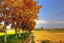 VENETO / My region and its wonders
