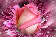 Τριαντάφυλλα !!! / Όμορφα τριαντάφυλλα !!!!!!!!