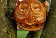 Bodenham Torchlit Pumpkin Walk / Pictures of the pumpkins from Bodenham Arboretum pumpkin walk