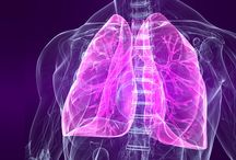 Gesundheit Lunge