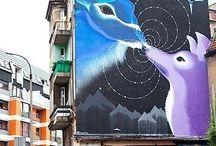 Kolorowe bloki i domy / Malowane ściany budynków