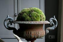 Vazen en potten