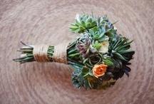 ramos de suculentas / suculents bouquets / ramos realizados con plantas suculentas