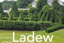 Field Trips / Visits to gardens, nurseries, antique shops or other fun places!