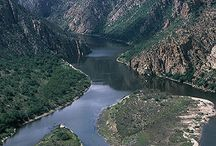 Eastern Cape - South Africa
