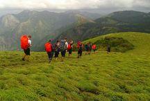 Western Ghats Trek / Team 4 successfully completed their trek #westernghats #kerala #trekking