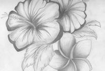 Dibujos / Láminas y dibujos en lápiz para crear en papel