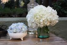 Future Shabby-Chic Wedding / by Jacqueline Best