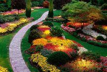 landscaping, ideas for my yard / by Linda McKinney