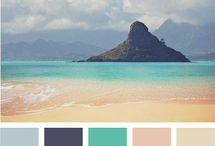 beach pallet