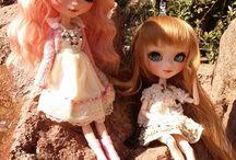 Anís, Canela & Carrot