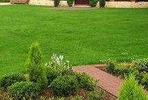 Lawns are Beautiful / Beautiful Lawns can be peaceful, serene, relaxing, uplifting and fun