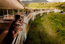 Island Activities / There's so much to do in the beautiful island of St. Kitts