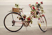 Love - Beautiful bicycles
