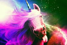 My Fantastic Unicorn Pictures