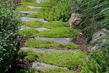 Walkways/Paths