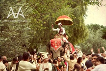 Indian Wedding Baraat / by Indian Wedding Site