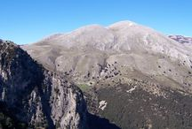 Parco delle Madonie in Sicily / A natural park in Sicily - come and visit -  http://www.vacanzasiciliamadonie.it/home_ing.htm