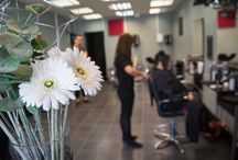 Hairdressers / Photos taken inside hairdressing salons for their websites. Real fun!