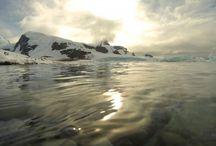 L'antarctique, le continent blanc / Le dernier continent intouché par l'homme