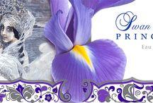 Purple parfum collection / Коллекция фиолетовых флаконов