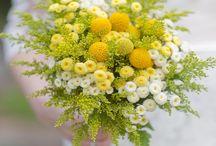 Green & flower