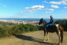 Rutas a caballo / Rutas y experiencias a caballo