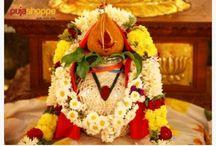 Vastu Shanti Puja Samagri Online