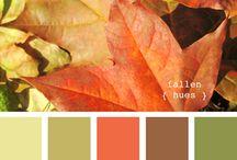 Palheta cores