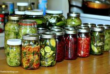 wild fermentation. / fermented food recipes.