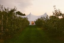 Wedding Tents / How to use tents at weddings
