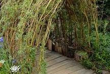 Gardening: Garden Arches