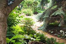 Storybook Gardens
