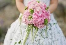 Dresses / Very Beautiful Dresses  / by Amira Larora
