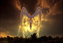 Angel / by vera laer