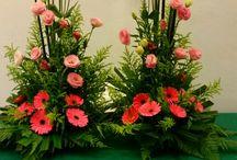 Kwiaty/Flower