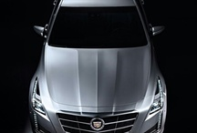 Cadillac  / by Rocco Rules
