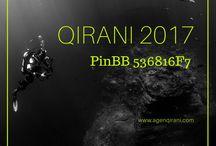 Qirani Anak 2017 / Nanda CS 1 Qirani  : SMS: 085731730007 Whatsapp: +6285731730007 BBM: 536816F7