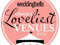 Wedding Planning 101 - Informetrics