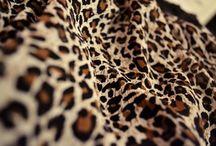 Pattern: Jungle Prints