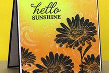 Cards Hero Arts Hello Sunshine Daisies / by Aletta Heij