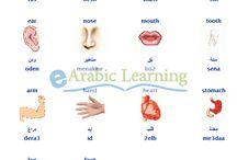 arapça öğren