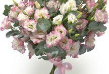 букеты в холодных розовых тонах