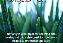 magia delle piante