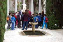 Programa Educativo / Con el Programa Educativo visita la Fundación de mano de tus educadores.