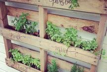 small veggie patch