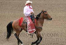 Cowboy eBay / Good stuff for cowboys and cowgirls on eBay.