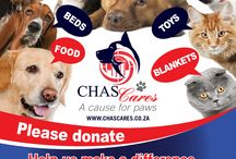 Chas Cares: A Cause For Paws / We are hoping to make a difference through the community to help animals in need during the upcoming winter months. Most shelters are in need of blankets, food, etc for the animals in their care. All our local branches are getting involved to contribute to a local animal organisation of their choosing.
